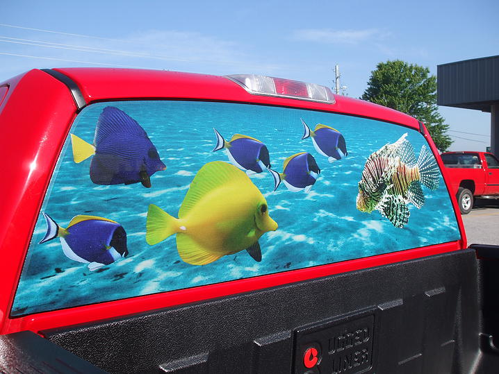 Vehicle Wrap / Graphic 13